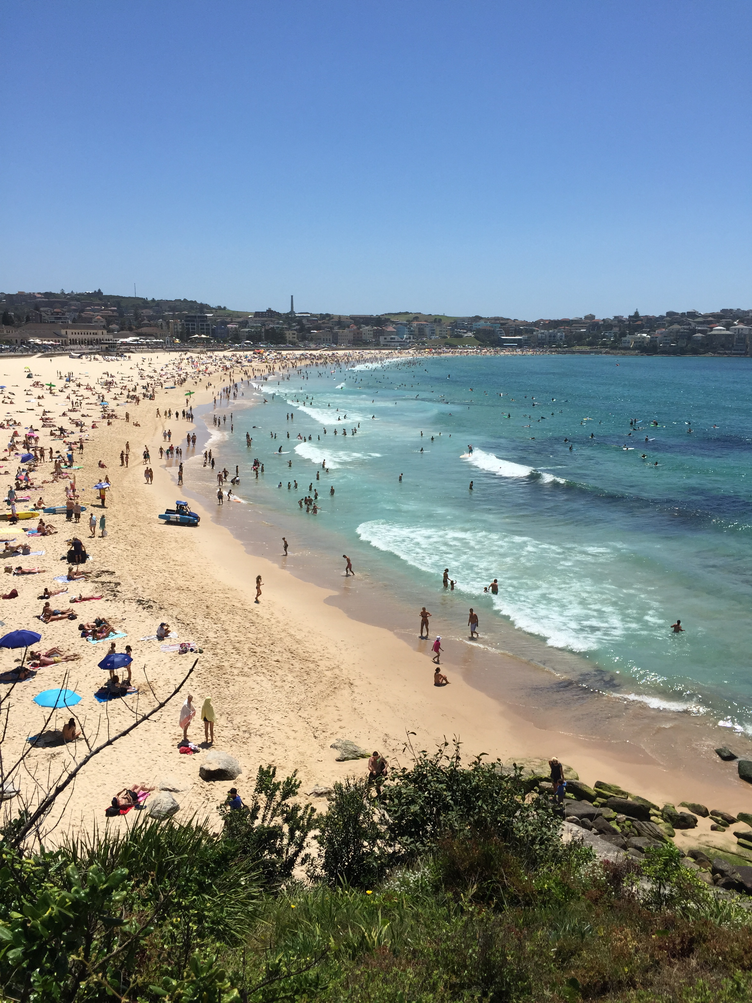 Aerial photo of sandy beach full of people.