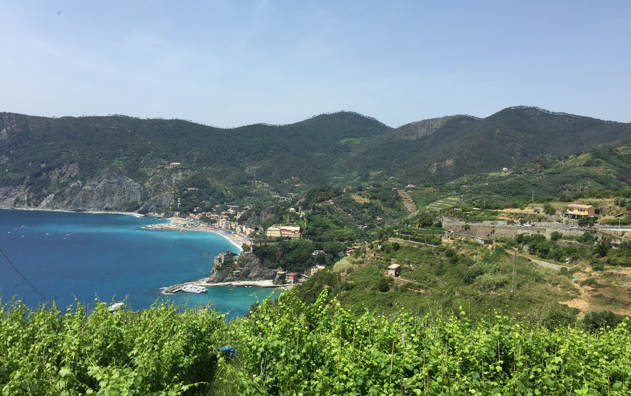 Landscape photo with ocean on the left and lush mountainous coastline on the right.
