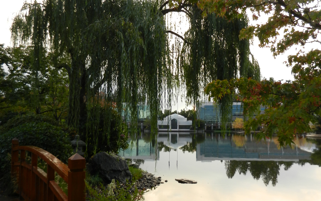 Small lake with a walking bridge and willow tree in the foreground and a white, domed building in the background.