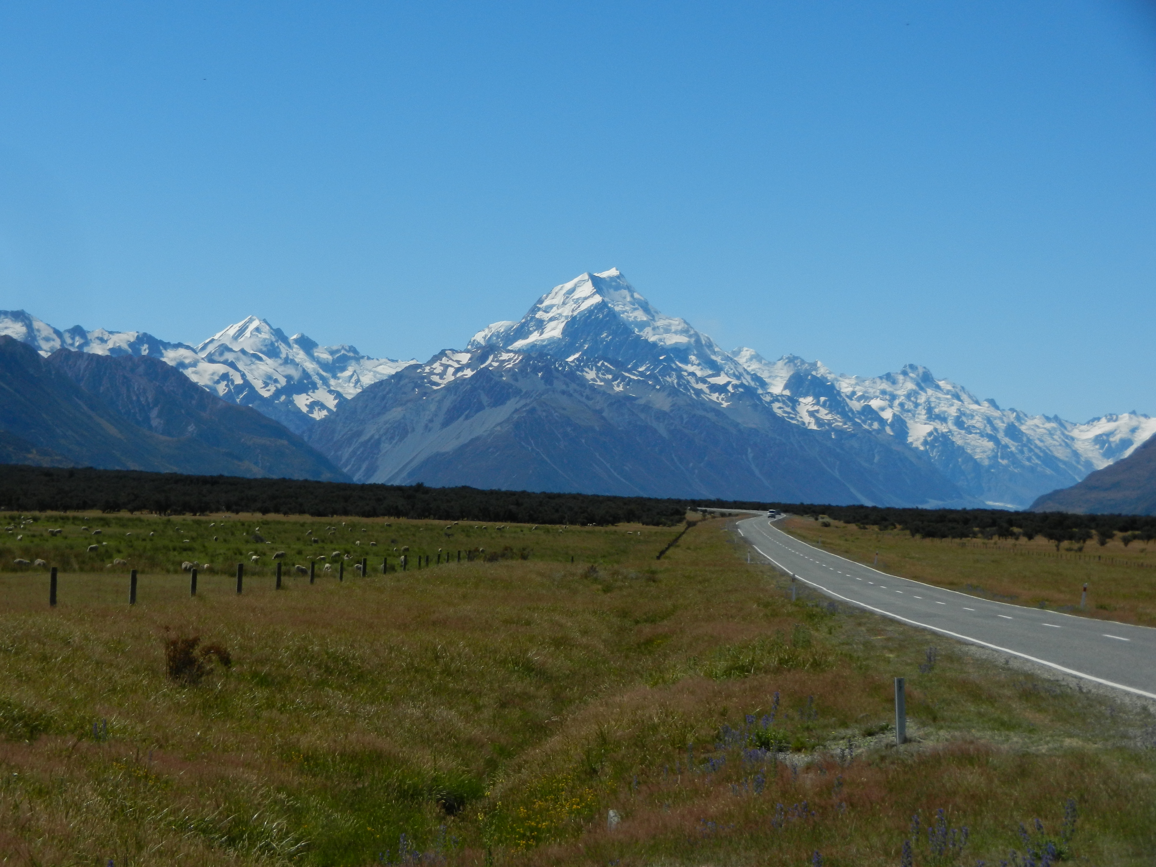 Mountain range in the distance with a road and open fields leading to it.