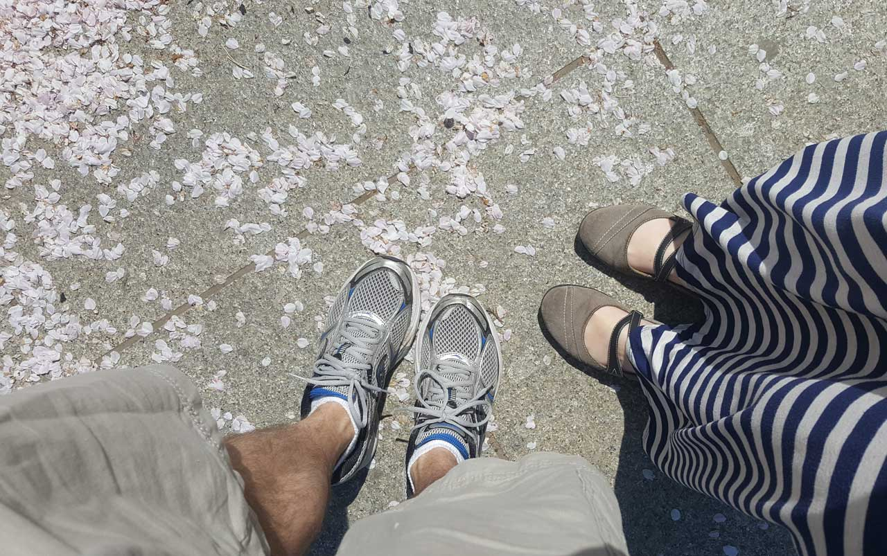 Man's feet wearing tennis shoes on the left, women's feet wearing grey shoes on the right standing on concrete dotted with pink cherry blossom petals.