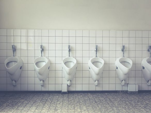 The great toilet divide